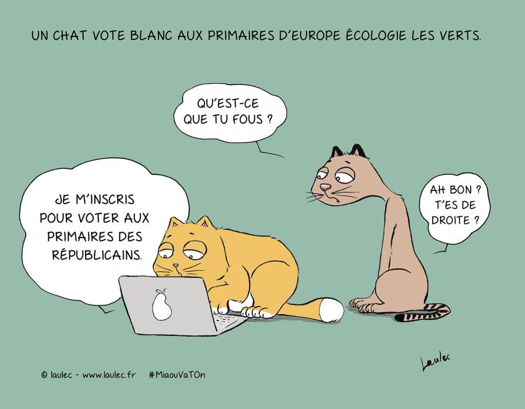 Actus-vote-coul